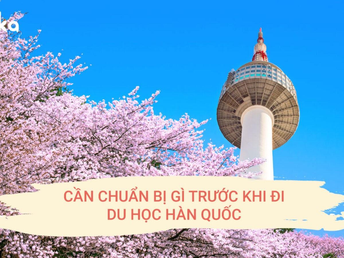 Can chuan bi gi truoc khi di du hoc Han Quoc 1200x900 1